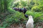 Teksen Köyü Doğa Yürüyüşü - 2