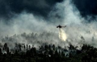 İzmir'deki Orman Yangını 3 Gündür Devam...