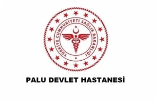 Palu Devlet Hastanesi