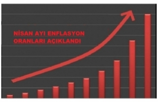 2020 Yılı Nisan Ayı Enflasyon Oranlarıyla Memurların...