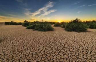 İklim Krizi Akşehir Gölü'nü Kuruttu