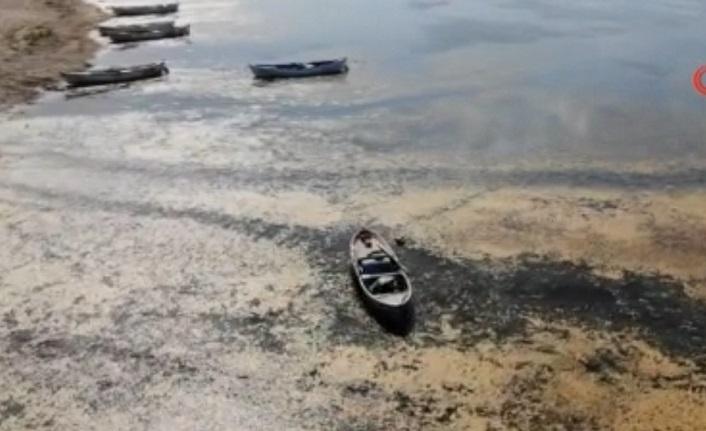 Kuş Cennetinden Çöle: Marmara Gölü